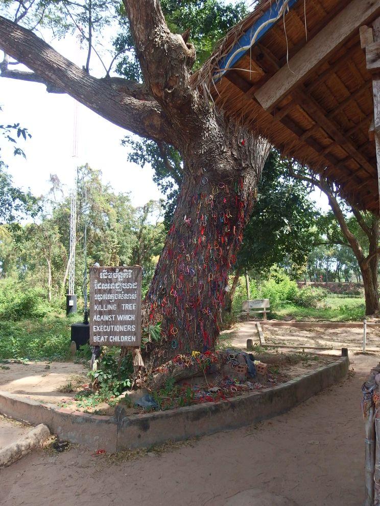 Drzewo, o które rozbijano niemowlęta